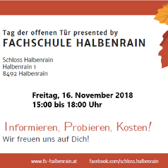Ticket 2018 © FS Halbenrain